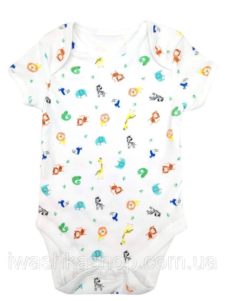 Біле боді з короткими рукавами і різнокольоровими тваринами для малюків до 4,5 кг, р. 56, Primark baby