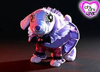 Собачка чи чи лав Монстер Дракула Monster Chi Chi Love Simba
