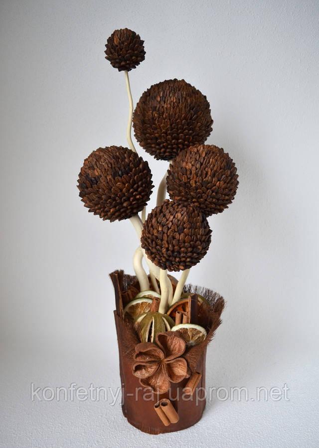 Дерево из кофе и сухоцветов