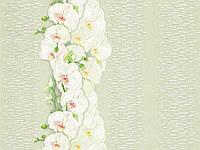 Обои бумажные Танго 7128-04 светло-салатовый, фото 1