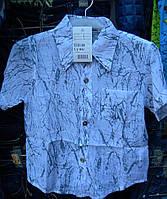Рубашка детская мальчик r53289451