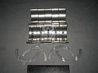Вкладыши коренные  МТЗ  Д 240 Н1  АО10-С2 (пр-во ЗПС, г.Тамбов)