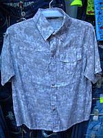 Рубашка детская мальчик r53289453