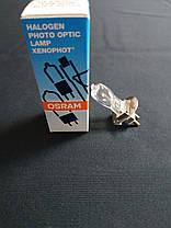 Лампа 64609 HLX 50W 12V PG22 капс. 50 час. OSRAM, фото 3