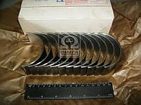 Вкладыши шатунные   МТЗ Д 260 АО10-С2 Н1  (пр-во ЗПС, г.Тамбов)