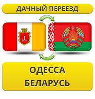 Дачный Переезд из Одессы в Беларусь!