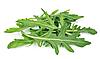 РУККОЛА Микрозелень, семена зерна рукколы органические для проращивания 30 грамм