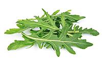 РУККОЛА Микрозелень, семена зерна рукколы органические для проращивания 30 грамм, фото 1