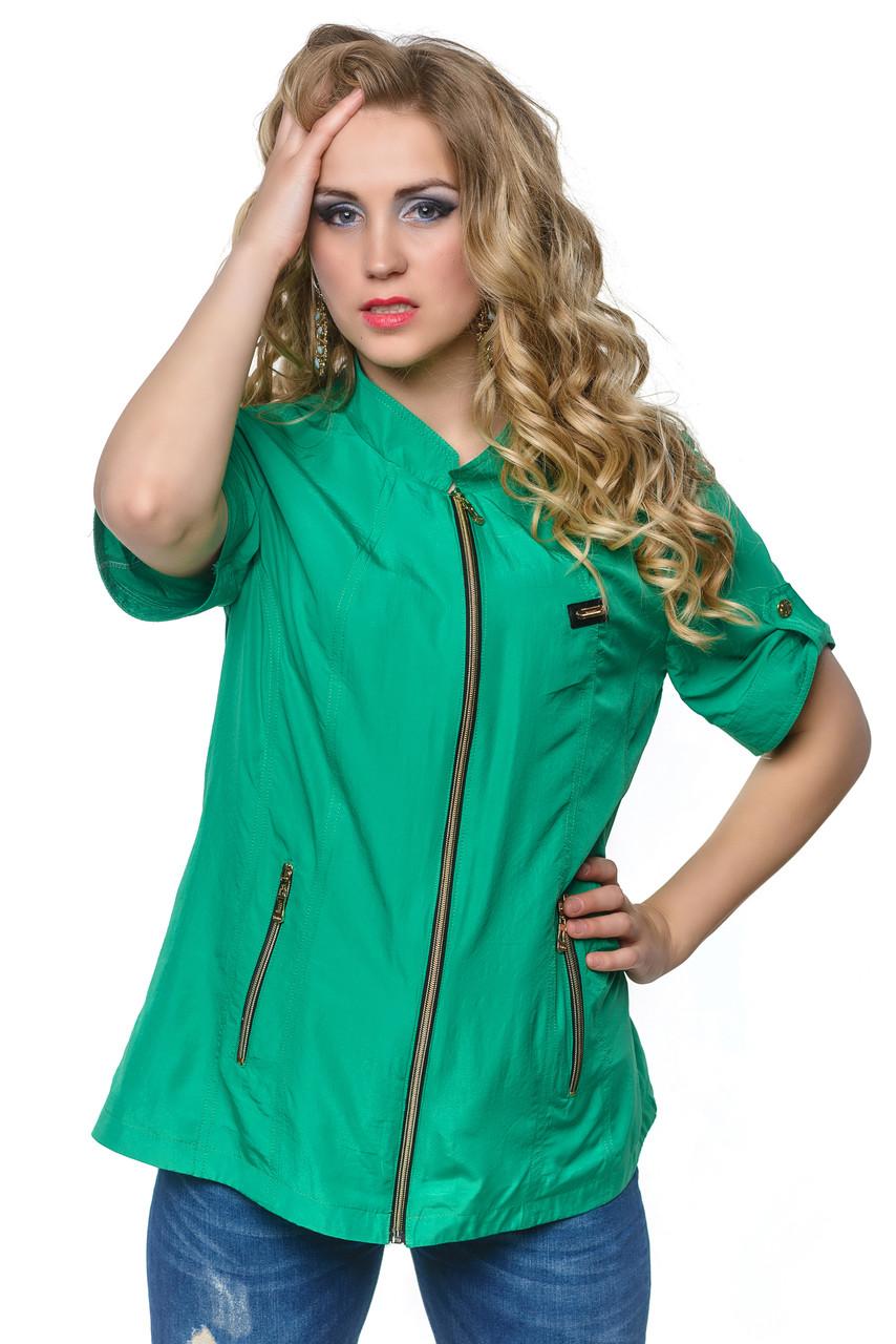 Модный летний пиджак с коротким рукавом.