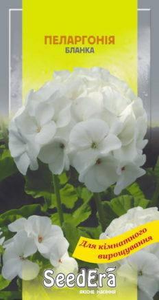 Семена Пеларгония Бланка , фото 2