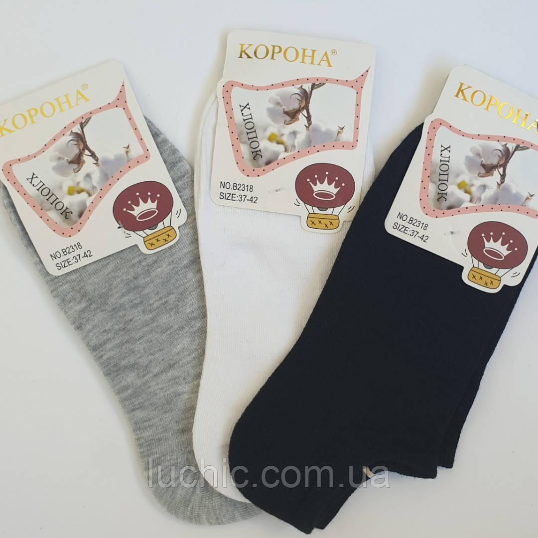 Жіночі шкарпетки КОРОНА (Бавовна) 37-42р 12шт в уп.