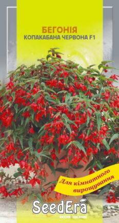 Семена бегония боливийская Копакабана, фото 2