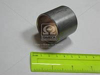 Втулка шатуна  МТЗ Д 240-1004115А1-01   (пр-во ЗПС, г.Тамбов)