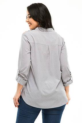 Блузка 5291 светло-серый горох, фото 2