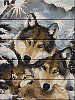 Картина по номерам на дереве Семья волков 30 х 40 см ТМ ArtStory