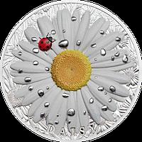 Ромашка ~ Срібна монета у футлярі, фото 1