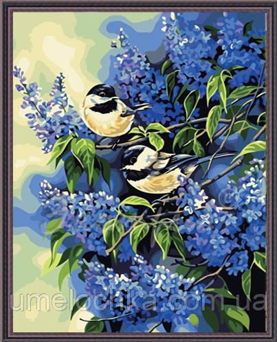 Картина по номерам на холсте Идейка Синички в сирени KH216