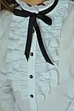 Школьная нарядная блузка с рюшами и чёрной лентой, фото 4