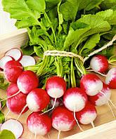 Весовые семена редиса КБК