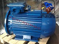 Электродвигатель 4АМУ250М2 90 кВт 3000 об/мин (90/3000)