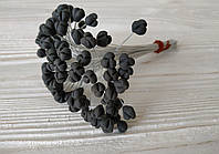 Серединкаи тюльпана (черные)