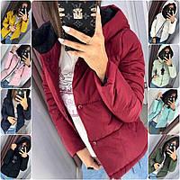 Стильная Короткая Куртка с Капюшоном РОНДО! 9 ЦВЕТОВ!, фото 1