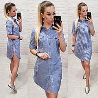 Платье - рубашка  арт 827синее в полоску електрик