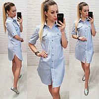 Платье - рубашка  арт 827 голубое в полоску