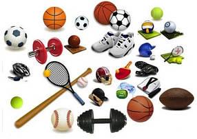Товары для командных видов спорта