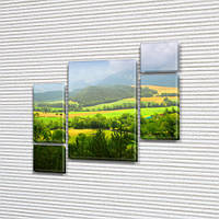 Модульная картина Сочная зеленая долина, на ПВХ ткани, 85x85 см, (40x20-2/18х20-2/65x40), из 5 частей, фото 1