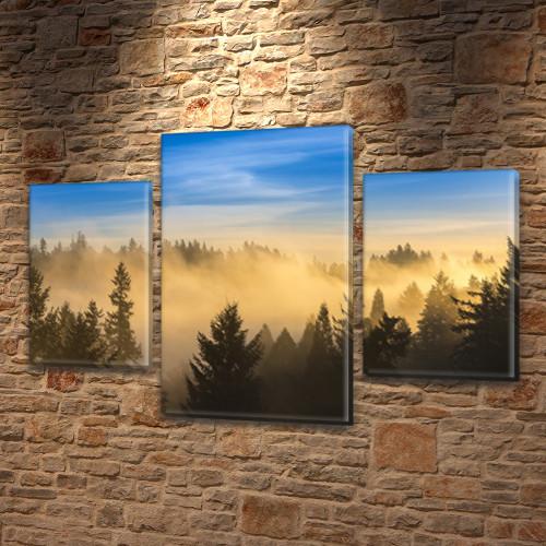 Модульная картина Туман над лесом и голубое небо, на Холсте син., 45х70 см, (30x20-2/45x25), Триптих