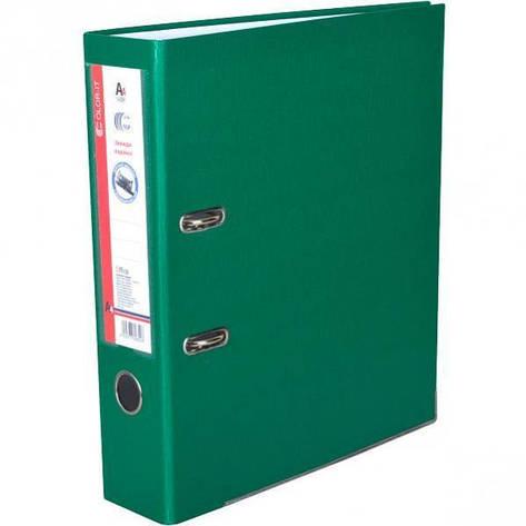 Сегрегатор 5 см «C» зеленый       DS2207-05G, фото 2
