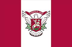 Прапор Вишневого