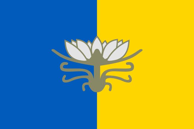 Флаг Голой Пристани, фото 2