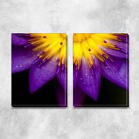 Необычный фиолетовый Цветок, модульная картина (Цветы), на ПВХ ткани, 45х63 см, (45х30-2), фото 1