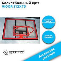 Баскетбольный щит VIGOR 112X75 BB001, фото 1