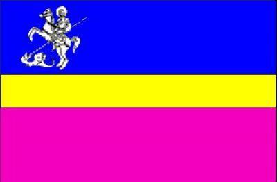 Флаг Нежина