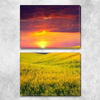 Модульная картина Поле желтых цветов и вечернее небо, на ПВХ ткани, 63х45 см, (30х45-2), из двух частей