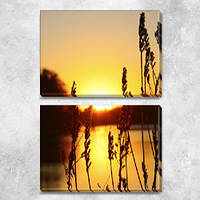 Модульная картина Колоски на закате, на ПВХ ткани, 63х45 см, (30х45-2), из двух частей