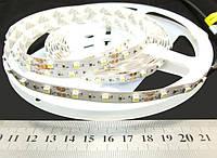 Світлодіодна стрічка 2835-60-IP20-CWd-8-12 RF0860TA, холодно-білий, 60шт/м, 12 В, 4.8 Вт
