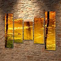Модульная картина Золотой солнечный свет в лесу на ПВХ ткани, 90x110 см, (90x20-2/60х20-2/45x20), из 5 частей