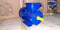 Электродвигатели общепромышленные АИР56В2У2 0,25 кВт 3000 об/мин ІМ 1081  , фото 1