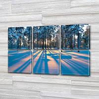 Модульная картина Тень от деревьев на снегу, зима на Холсте, 72x110 см, (35x35-6), из 6 частей, фото 1