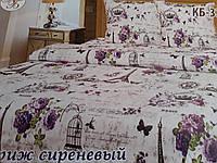 Постельное белье Тирасполь бязь евро .Сиреневый Париж Тиротекс