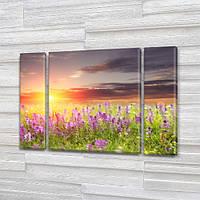 Модульная картина Поле с фиолетовыми цветами на Холсте, 95x135 см, (95x24-2/95х80), Триптих