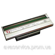 Термоголовка Zebra GT800 (203 dpi) P1025950-009