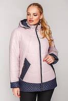 Женское демисезонная куртка стеганная большого размера 52-62 размера пудровая, фото 1