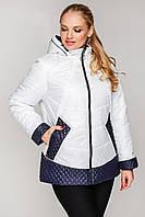 Женское демисезонная куртка стеганная большого размера 52-62 размера белая, фото 1