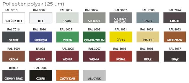 Metalocherepica-ren-pruszynski-colour