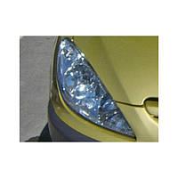 Защита передних фар прозрачная. (EGR) - 307 - Peugeot - 2002